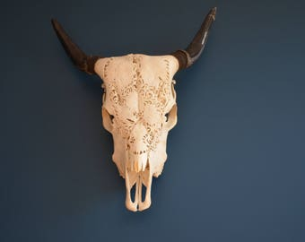Unique Carved Cow Skull