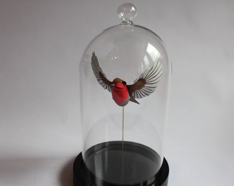 A Red Breasted Gentleman in a Bell Jar. Paper Robin Sculpture. 2017.