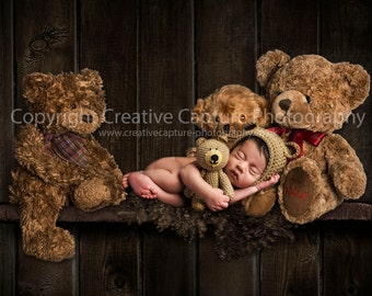 Newborn Digital backdrop / background / Shelf / Teddy