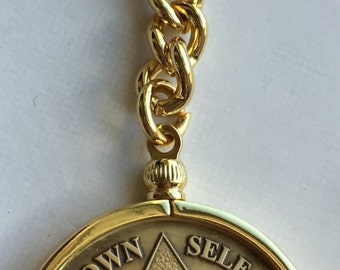 Wendells AA Medallion Keychain Sobriety Chip Coin Holder Gold Plated Key Chain