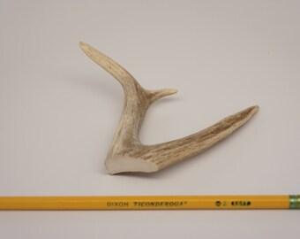 Medium Deer Antler Forks: Naturally Shed Deer Antlers Forks, Furniture, Tribal, Jewelry, Crafts, Deer Tines A6