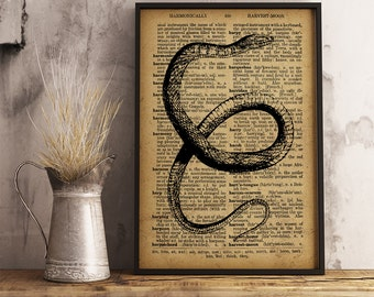 Snake Art Poster, Diamondback Water Snake Print, Snake scientific art print, Herpetology Print, Gift for herpetologist (RS08)