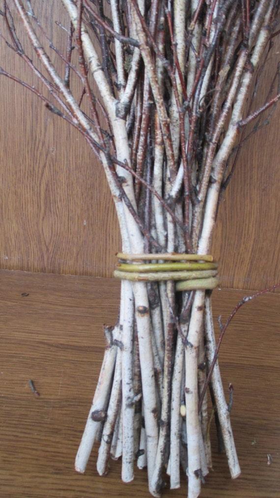 Extra Long Birch Twigs Birch Twigs Birch Tree Branches