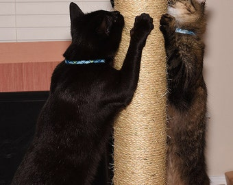 """30 inch tall 4 1/2"""" dia sisal rope cat scratching post"""