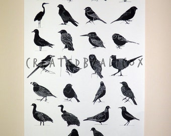 A1 Large Screen Print 'A- Z of Birds' Hand Printed Silkscreen Illustration Poster