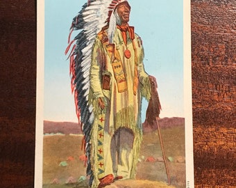 61- Chief Crazy Horse postcard. #277 Brilliant color.