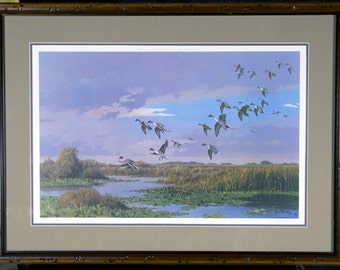 """LEE LEBLANC """"PINTAILS"""" / Limited Edition Hand Signed Wildlife Print / Framed"""