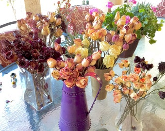 Gorgeous Large Eternity Dried Specialty Rose Stems or Buds Bundles of 3 .