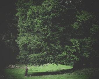 Framed Art print - Julie of the World Tree