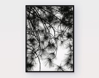 Digital Print Trees, Photography, Home Decor, Nautical Print, Printable, INSTANT DOWNLOAD, Modern art, Plant Print Wall Art, Black & White