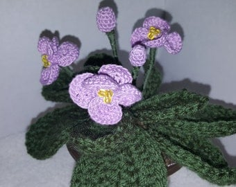 Knitted violet plant