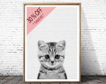 Kitten Print, Baby kitten Photo, Nursery print, Printable Wall Art,  Animal Photography, Cat Lover Gift, Instant Download, Nursery Decor