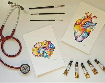 Watercolour Anatomy Art- Heart and Brain Set