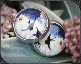 Stainless steel earstuds Blue Swallow 1