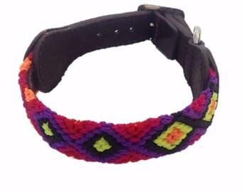 Extra Small Dog Collar XS6