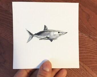 "Blue Shark, 4""x4"" original watercolor painting"