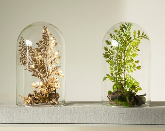 Forest terrarium of artificial plants, Cabinet of curiosity, dome Bell glass, Christmas birthday gift, Garden decoration