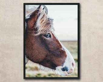 Horse, Horse Print, Horse Photography, Horse Poster, Wall Art Printable, Instant Download, Modern Art, Digital Print