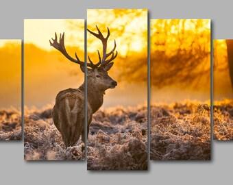 Five Panel Red Deer Print