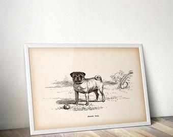 Printable art, Dog print, Antique dog print, Dog printable, Digital download print, Home wall art, 8x10 art, 11x14 art, Animal print vintage