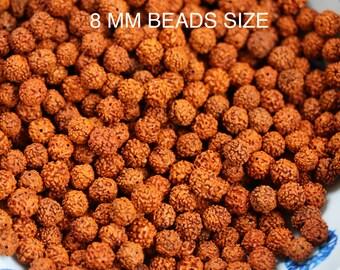 200 Rudraksha Beads/Rudraksha Loose Beads/Rudraksha 8MM Beads/Bracelet Rudraksha Beads/ 8MM/200 Beads
