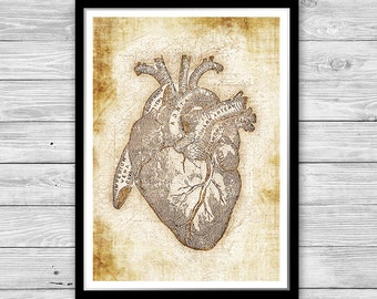 Heart print, Anatomy Heart, Archival art print with style of old geographic maps, Anatomy Heart Art Print, Vintage decor, Anatomy poster