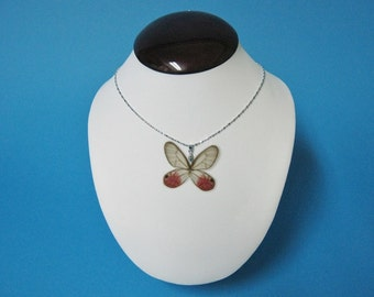 Whole Butterfly Necklace - Cithaerias merolina