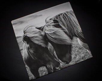 Icelandic ponies cushion cover