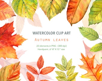 Watercolor ClipArt - Autumn leaves - Red Green Yellow, Hand painted ,Instant Download , Fall leaf clipart, Digital graphic, Leaf image
