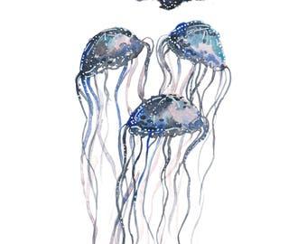 Jellyfish Trio