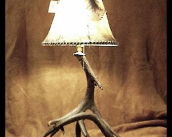Table Lamps Real Antler Lighting Deer Antler Lamps Deer Antler Lights Antler Art Antler Decor Rustic Decor Rustic Lighting Shabby Chic