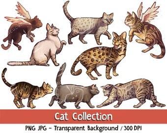 Cat Collection - Digital Download. Clip art and digital illustration, PNG JPG PDF 300 dpi