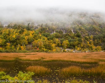 Upper Hadlock Pond in Rain and Clouds , Acadia National Park, MaineFall Foliage,Fall Landscapes,Lifting Fog,Misty Rain, Pond Raindrops,Mist