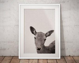 Nursery Baby Deer, Woodland Baby Deer Print, Woodland Baby Deer Art, Nursery Deer Decor, Baby deer art print, Woodland Deer Print, Woodland