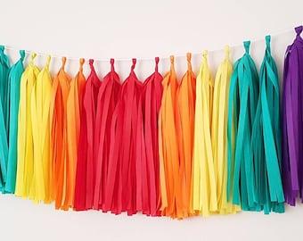 Rainbow  Tassel Garland Kit