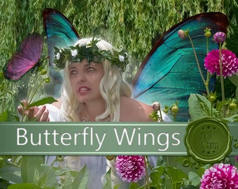 Butterfly Wings in PNG / Change yourself into a fairy / Birthday invitation and personal profile / Transparent wing / Do it yourself!