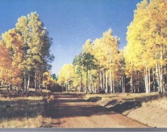 Natures Finest Display Colorado