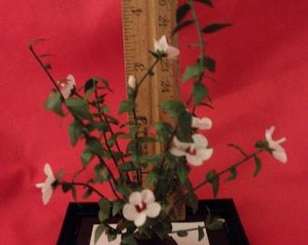 Hibiscus dollhouse miniature plant