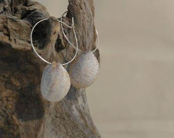 Slipper Shell Earrings