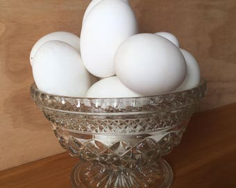 Empty Duck Eggs for Pysanky Eggs