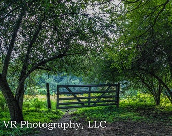 The Gate - Landscape Photography, Country Landscape, Farmhouse Decor, Nature Photography, Country House Decor, Still Life, Fathers Day Gift