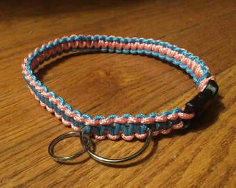 Blue and Pink Collar