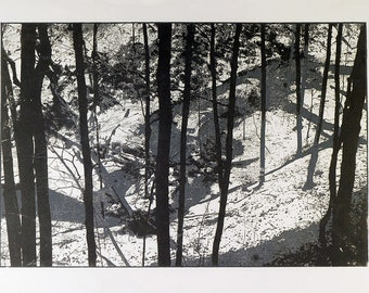 Highbanks Park in Winter. Original Woodcut Print.