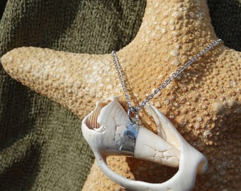 Soldered Shell Necklace On Chain