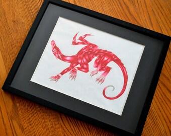 Dragon Anatomy