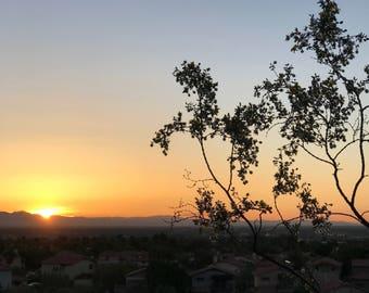Stunning Desert Sunrise Photo