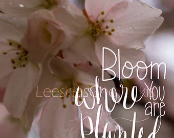 Cherry Blossom Print Motivation Bloom Where You Are Planted