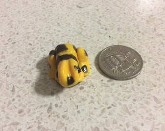 Yellow and Black Frog