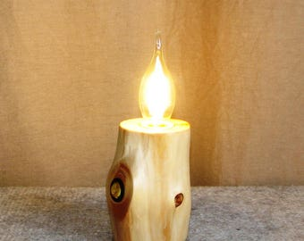 """Lamp from the pine branch """"Flax tree stump"""""""