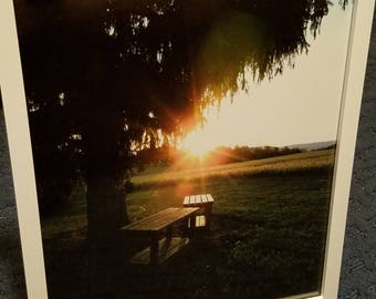 Scenic Framed Photograph